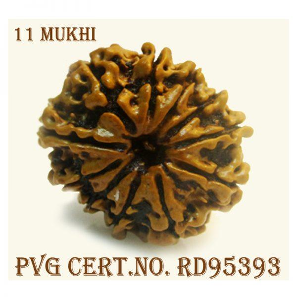 11mukhi-3198-G990