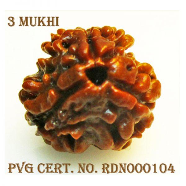 3Mukhi-1278-L517