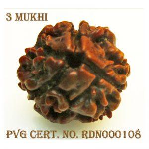 3Mukhi-1316-Y798