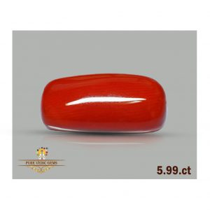 Red Coral 5.99ct-J219