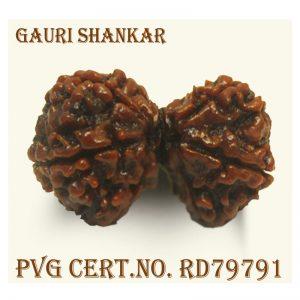GAURI SHANKAR-8078-K512