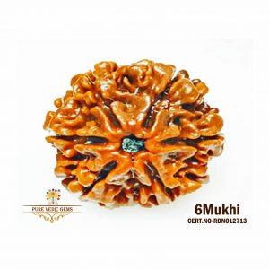 6Mukhi-3484gm-A253-rdn012713
