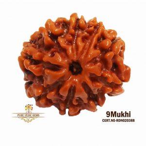 9Mukhi-3012g-N861-1